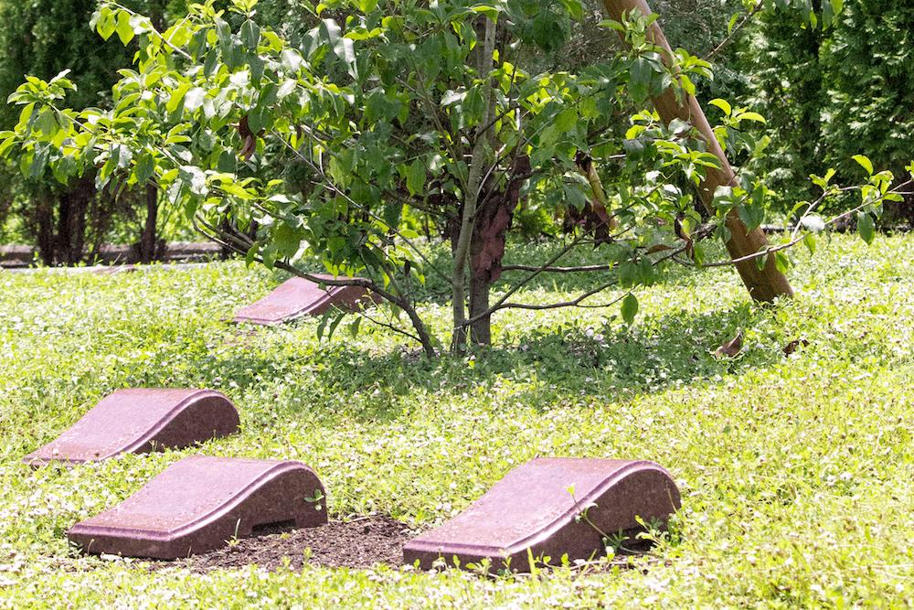 上田市の永代樹木葬