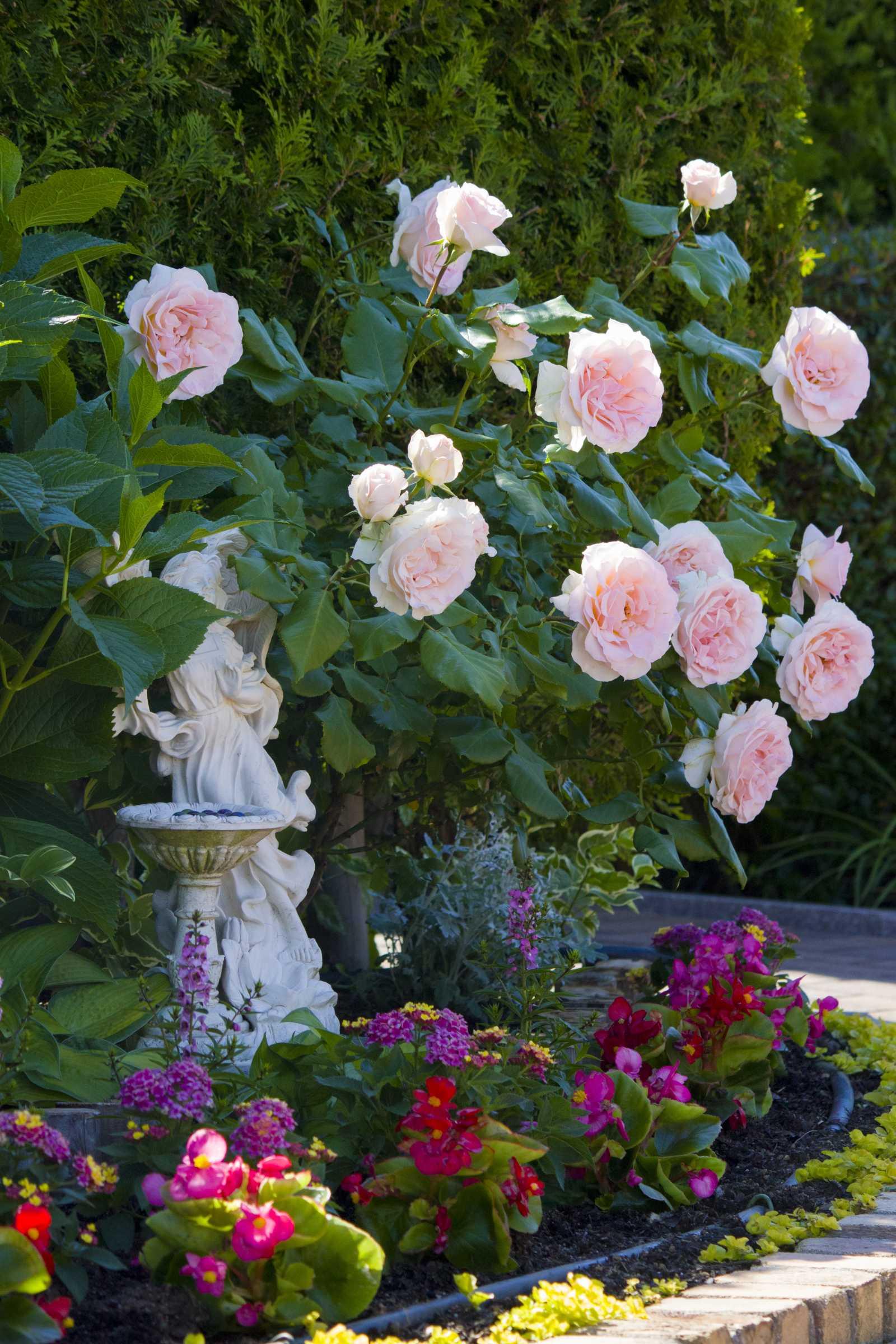 花と緑に囲まれた公園墓地 エンゼルパーク