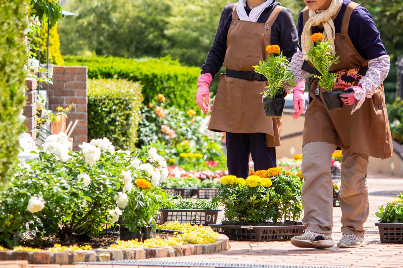 墓地霊園のお花植え