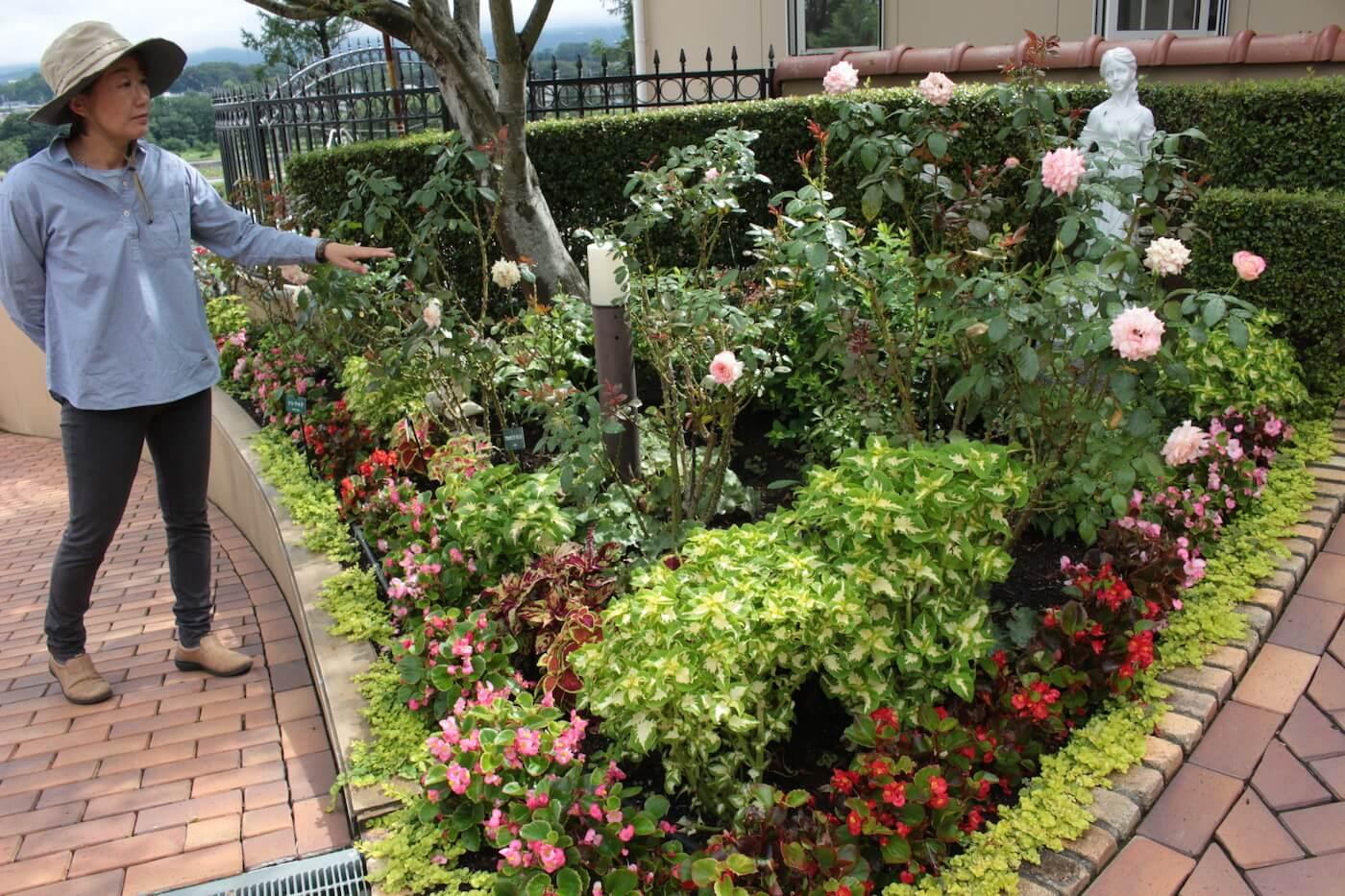お花植えの指導日-2019夏4回目-