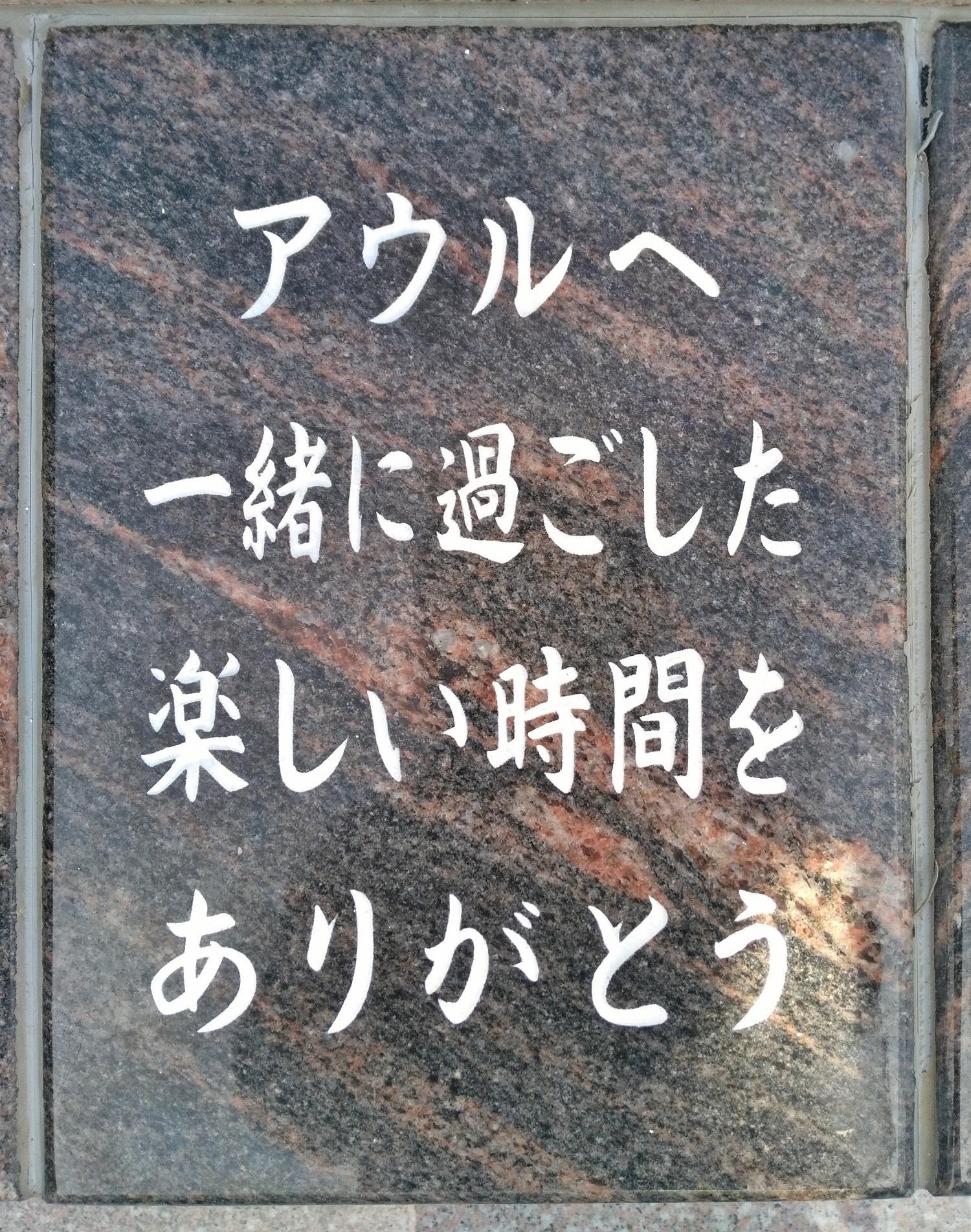 161031.jpg
